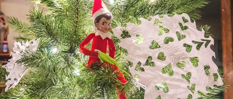 Christmas tree lori romano tag christmas tree solutioingenieria Image collections